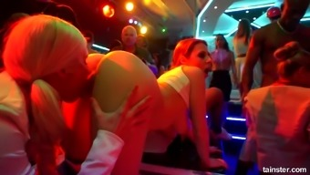 Greedy For Cum Bitches Enjoys Sucking Dicks And Get Fucked At The Party